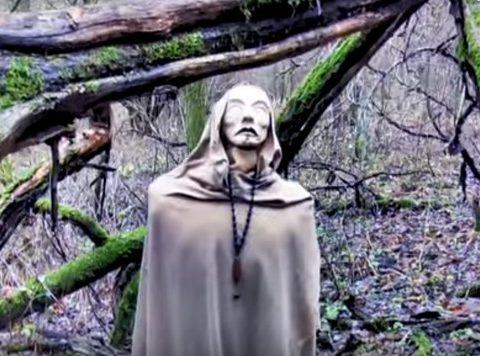 Las widmo w Granicy w Puszczy Kampinoskiej
