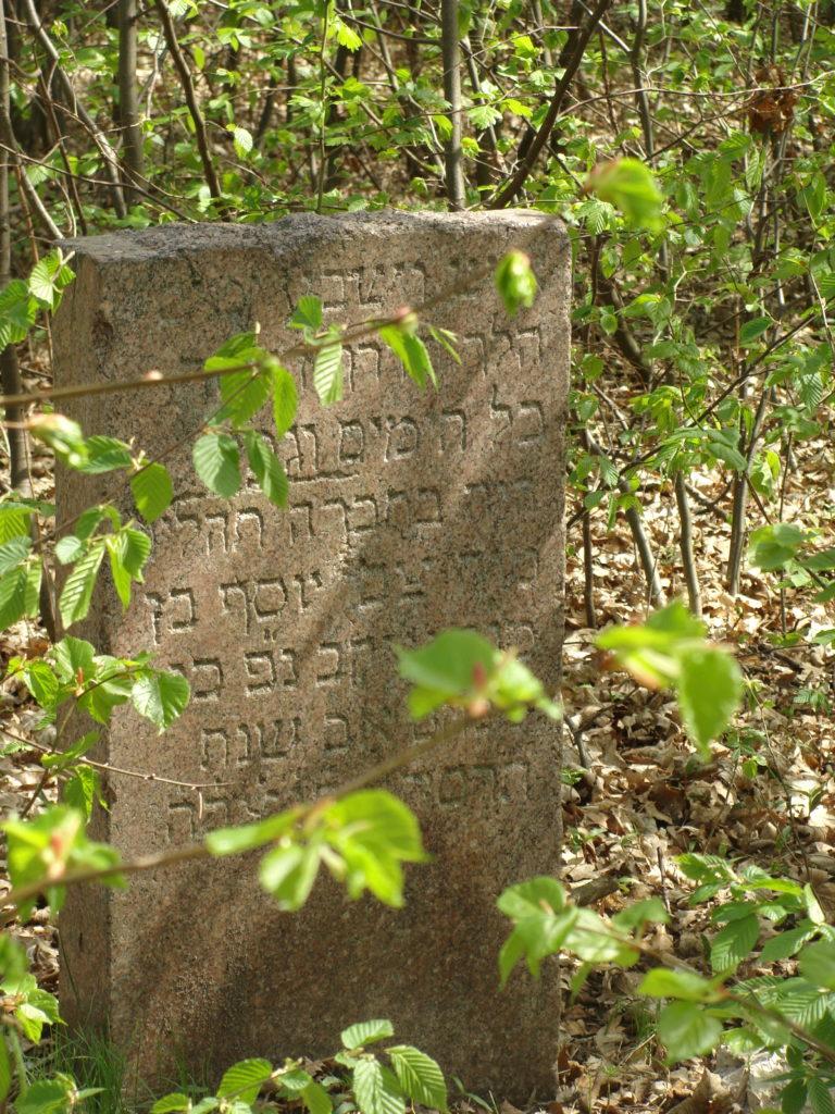 Pozostałości po cmentarzu żydowskim w Wyszogrodzie