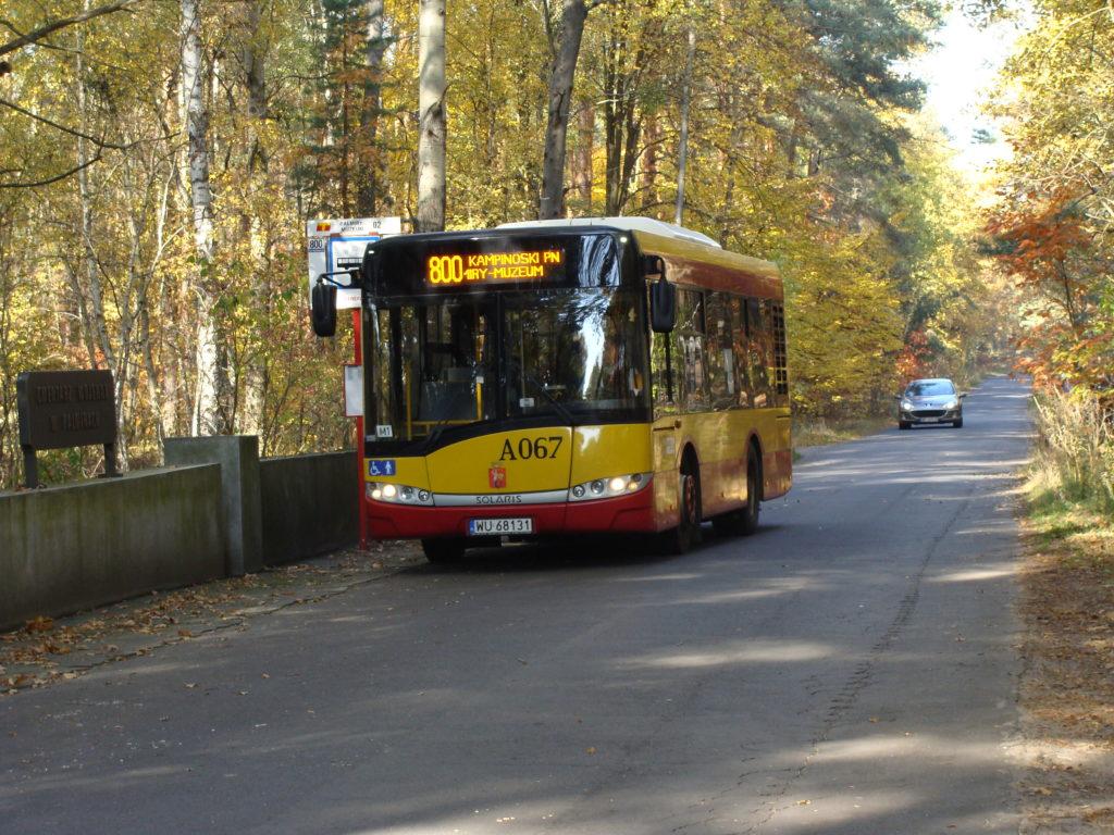 Autobus w Kampinoskim Parku Narodowym