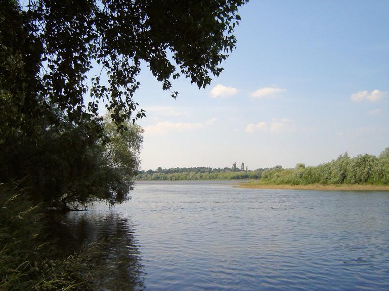Rezerwat Wikliny Wiślane