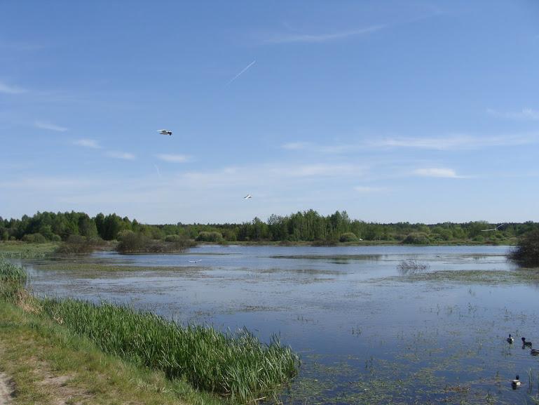 Zbiornik Mokre Łąki w Truskawiu