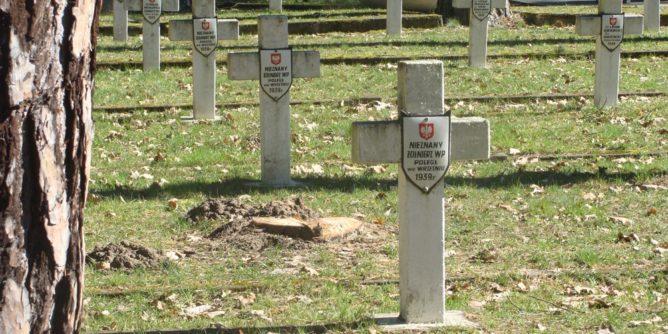 Cmentarz wojenny w Granicy (Kampinoski Park Narodowy)